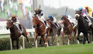 Sportwetten-Ratgeber pferdewetten